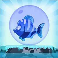 Play Baby-Fish
